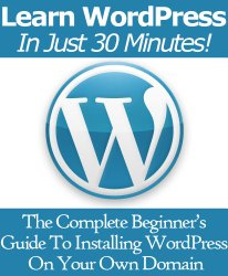 Learn WordPress In Just 30 Minutes! The Complete Beginner's Guide to Installing WordPress On Your Own Domain