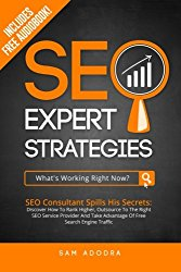SEO Expert Strategies: SEO Consultant Spills His Secrets – Discover How To Rank Higher, Outsource To The Right SEO Service Provider And Take Advantage Of Free Search Engine Traffic
