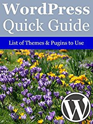 WordPress Quick Guide: Tips of Themes & Plugins to Use