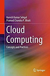Cloud Computing: Concepts and Practices