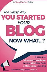 You Started Your Blog – Now What…? (Beginner Internet Marketing Series) (Volume 2)